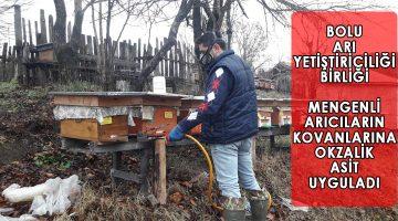 Mengen'deki Arılara Okzalik Asit Uygulandı